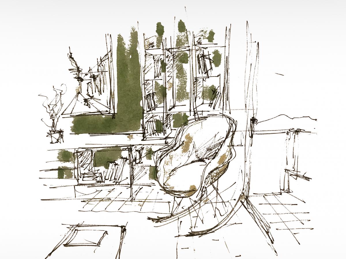sketch33D5D333-996F-E7E4-ACEC-AA031A25B4E0.png
